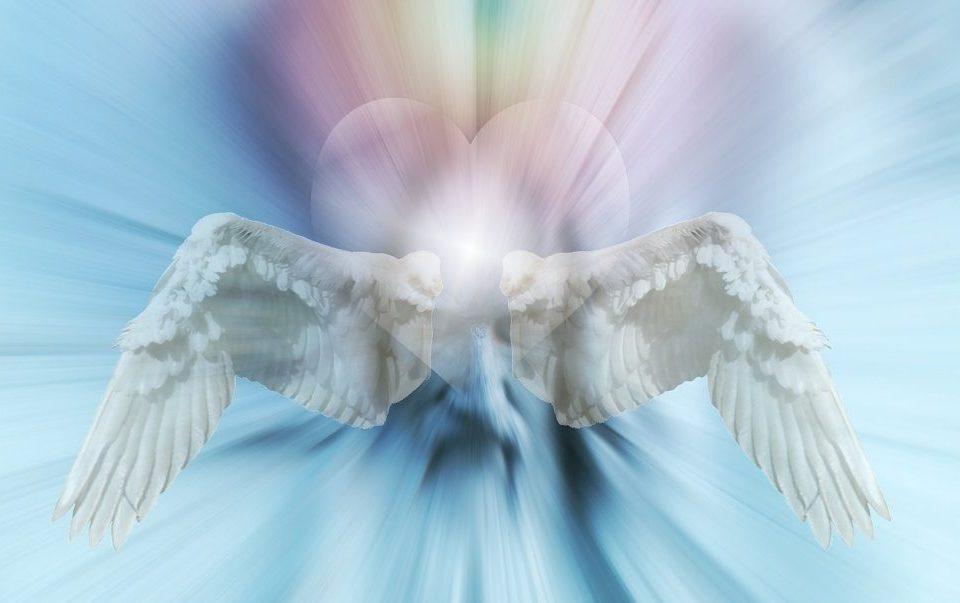 بال فرشته